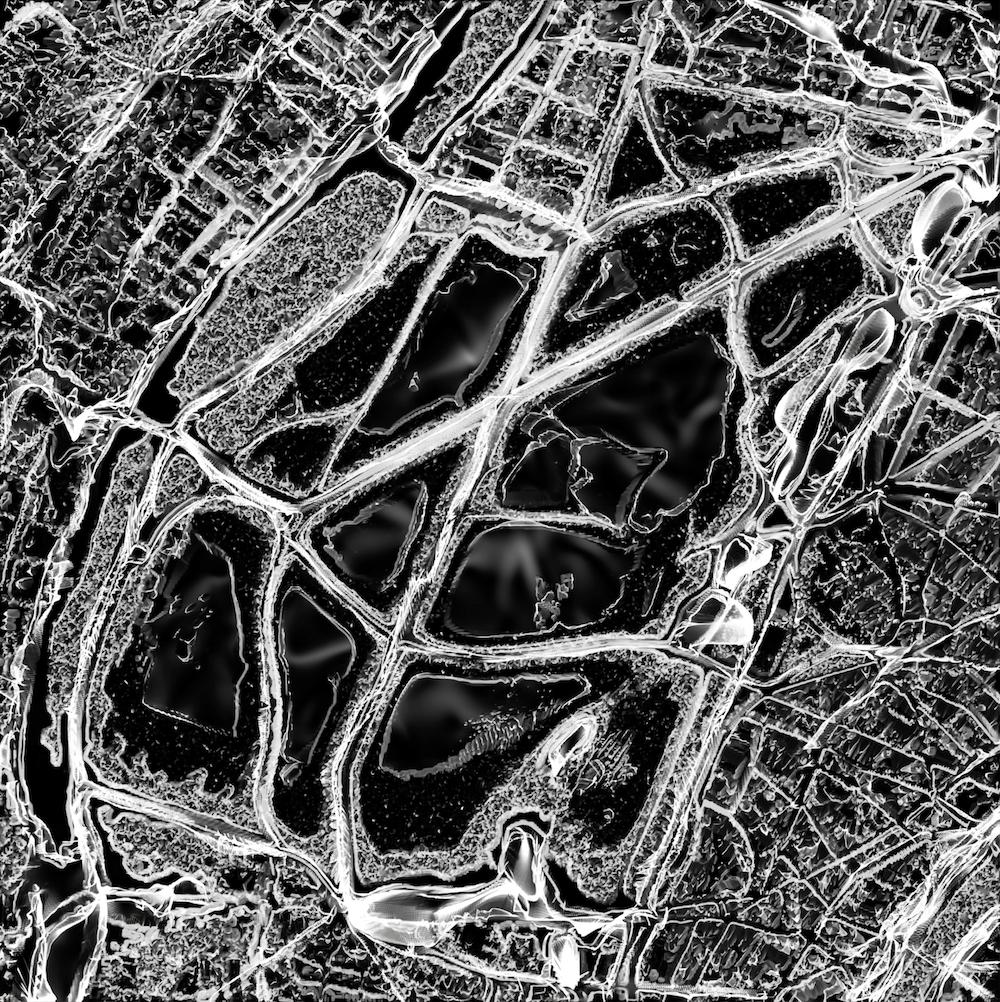 Bois de Boulogne – Usual